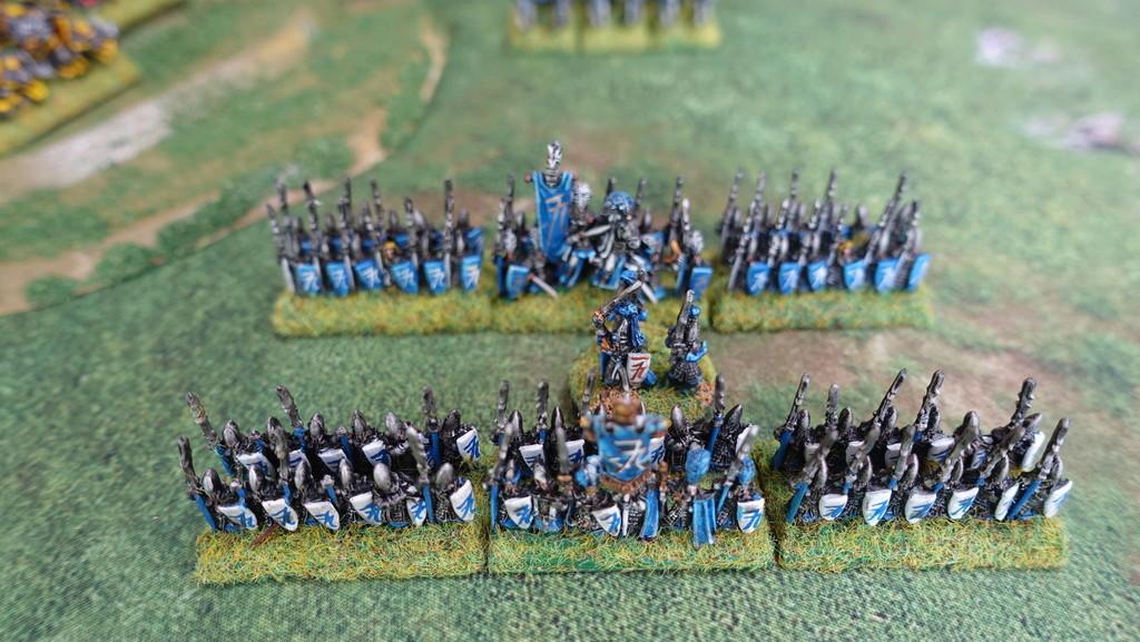 Armée Elfique Dsc01520