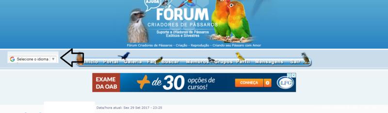 Colocar barra de tradução do Site neste local de exemplo da imagem ? Idioma10