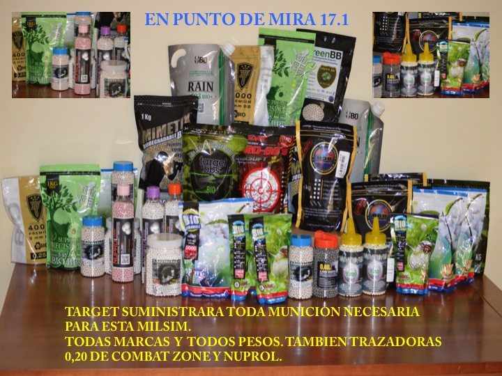 EN PUNTO DE MIRA  17.1  Slide110