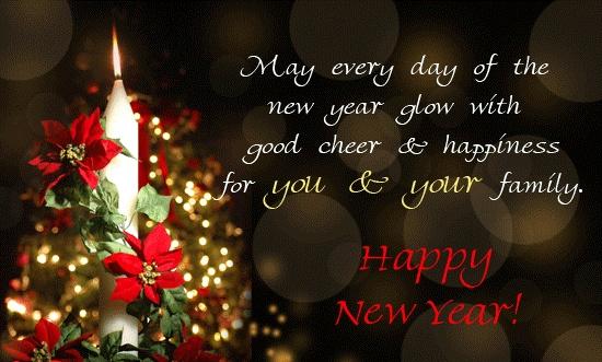 Bonne année !!! 20130110
