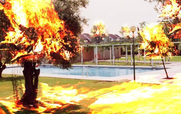 Incendio en el Colegio Mayor Maese Rodrigo Incedi10