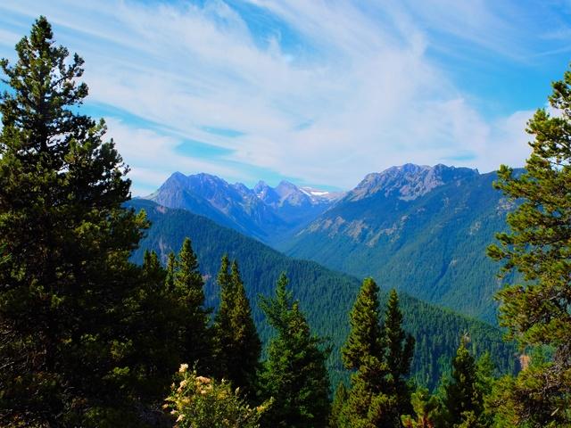 Hiking with Dogs: Mt. Townsend, Olympic Peninsula, WA Dscf0813