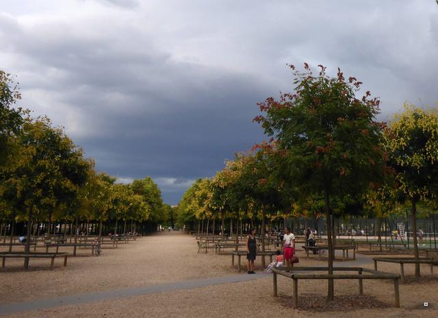 Choses vues dans le jardin du Luxembourg, à Paris - Page 5 P1000515