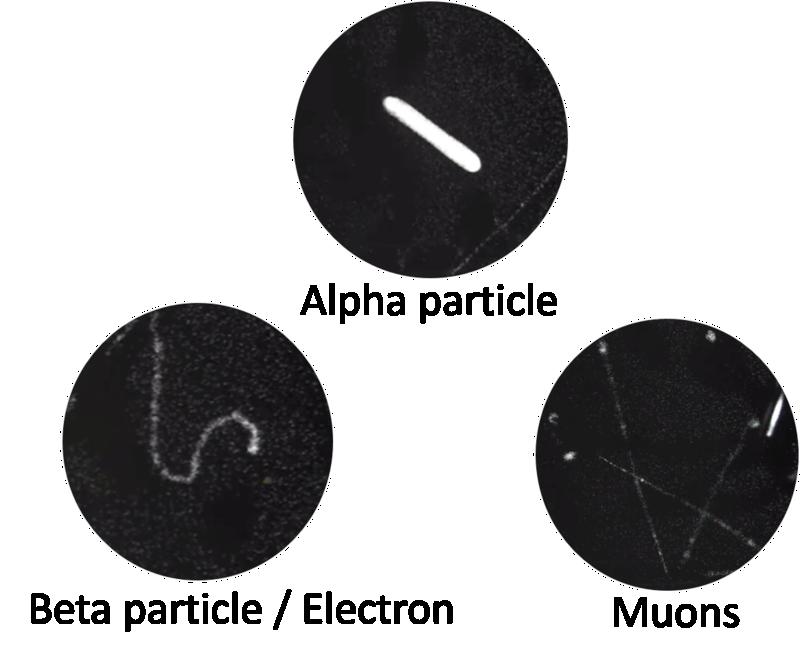Observez les particules cosmiques et la radioactivité naturelle EN DIRECT ! Alpha_10