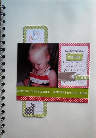 "*FAMILY DIARY 2012"" de Ckarine * MAJ 29/09/13  - Page 2 1front12"