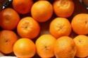 agrumes ( citrus ) : citron - lime - orange - bergamote - mandarine - pamplemousse - cédrat Citrus11