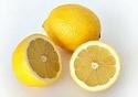 agrumes ( citrus ) : citron - lime - orange - bergamote - mandarine - pamplemousse - cédrat Citrus15
