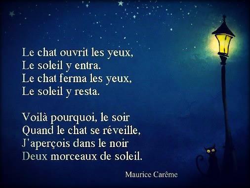 Vos poèmes préférés . 1) Verlaine : Mon rêve familier - Page 2 Chat_10