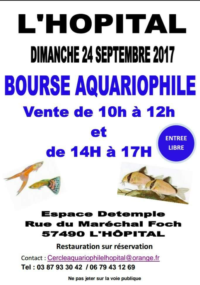 Bourse L'Hopital (57) - 24 septembre 2017 Fb_img13