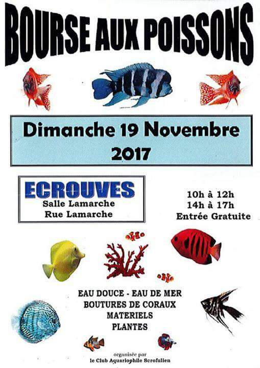 Bourse d'Ecrouves (54) - 19 novembre 2017 Fb_img14