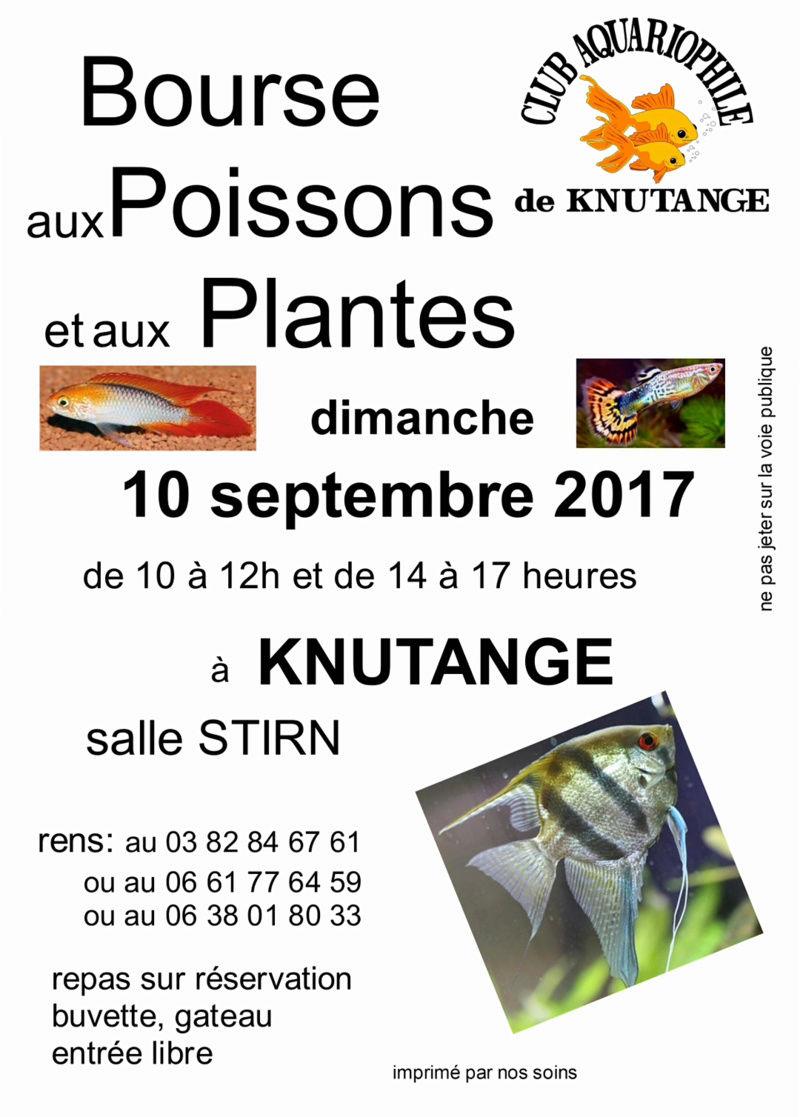 Bourse Knutange (57) - 10 septembre 2017  Img_2014
