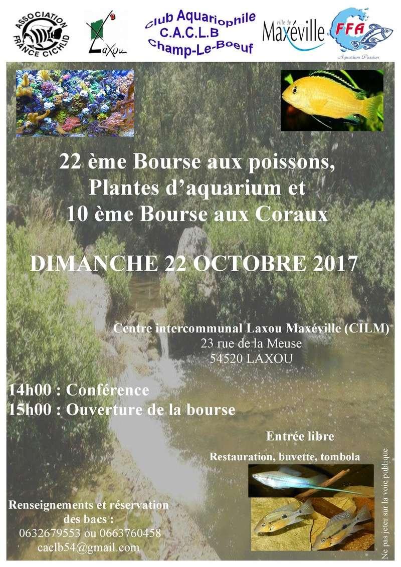 Bourse Laxou (54)  - 22 octobre 2017 Laxou10