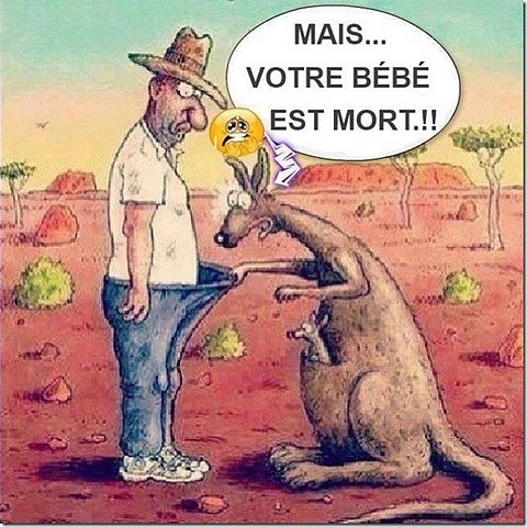 Humour en image - Page 39 Humour10