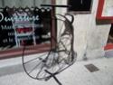 Balade sur la Vélo Francette [itinéraire] Sam_6613