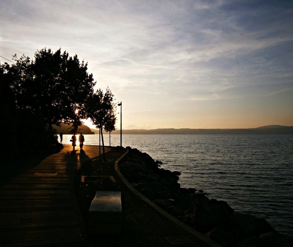 Il viale del tramonto Foto210
