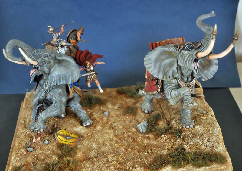 Bataille de Zama 202 av. JC Photos finales Dsc_0023
