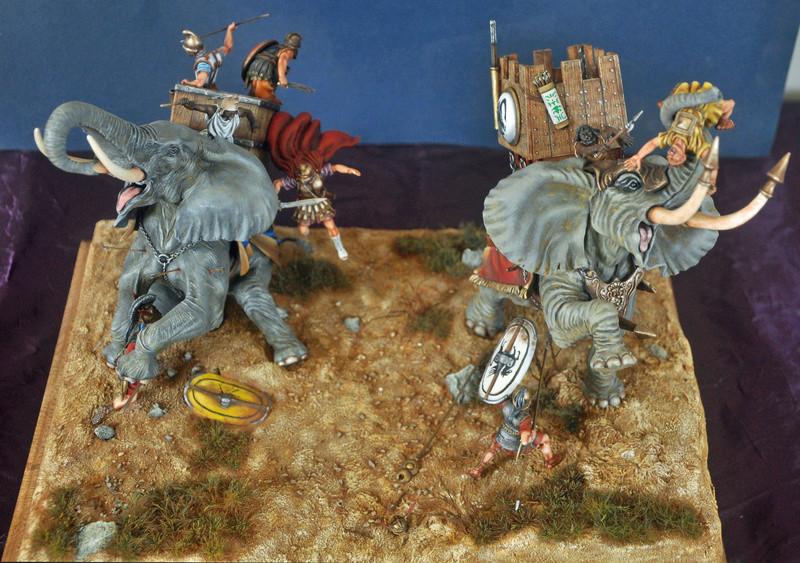 Bataille de Zama 202 av. JC Photos finales Dsc_0029