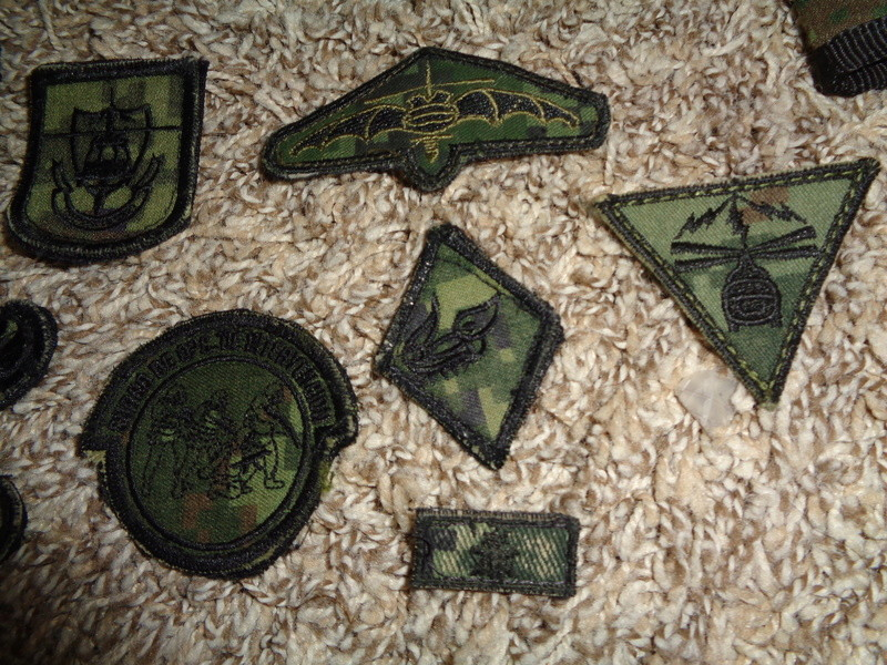 Mexican Special Forces * Small Cluster Of Insignia Dsc07124