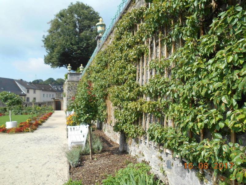 Weilburg (Germania) Dscn1763