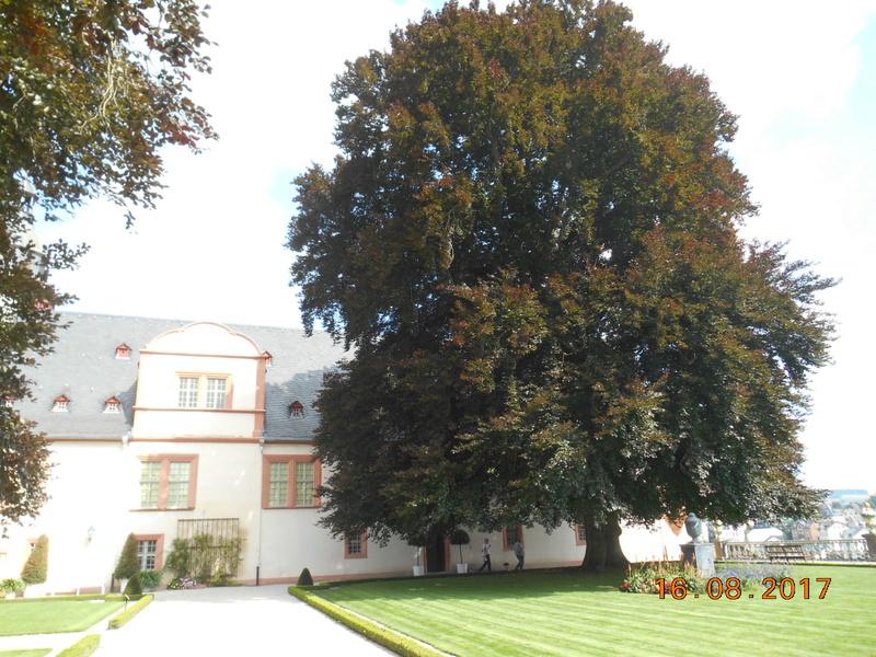 Weilburg (Germania) Dscn1773