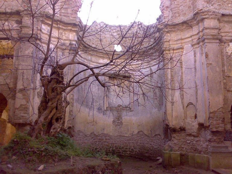 La città fantasma del Bernini nella Riserva Naturale di Monterano (RM) Riserv10