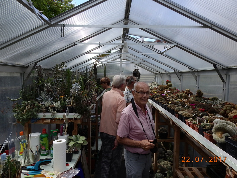 Cacti and Sukkulent in Köln, every day new flowers in the greenhouse Part 169 Bild1585