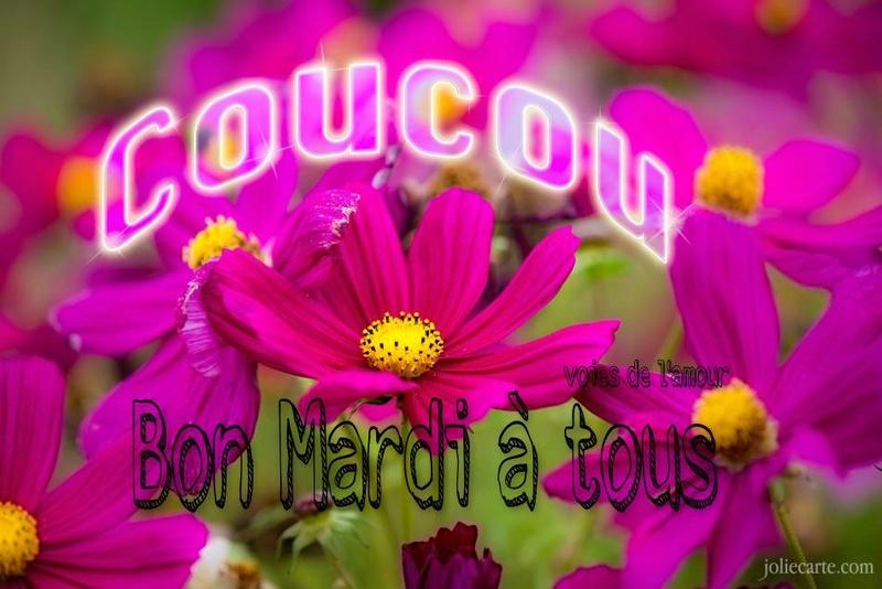 Bon Mardi Rose_m10