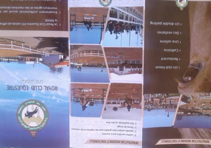 Royal Club Equestre d'El Jadida Haras110