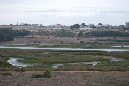 Les lagunes de Oualidia et Sidi-Moussa Photo_11