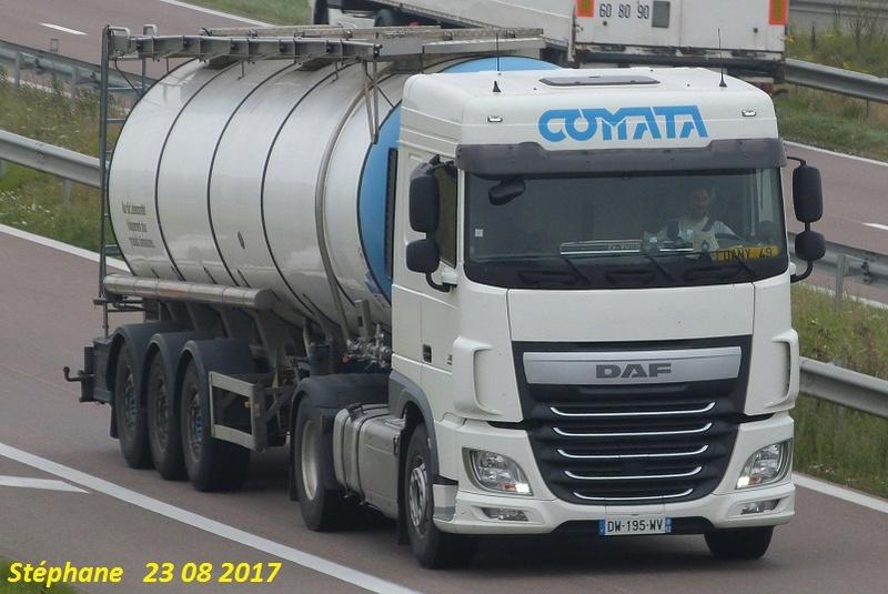 Comata (Feuchy, 62) Le_23114