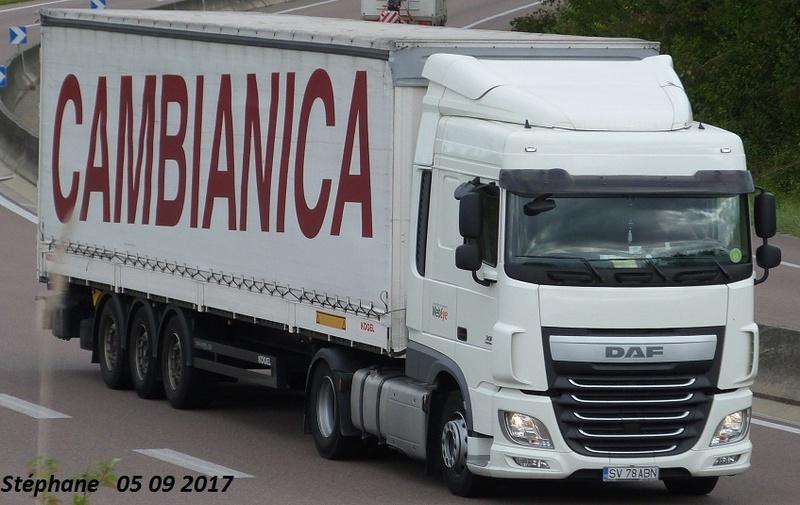 Cambianica (San Paolo d'Argon) Rocade76