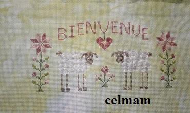 1er petit SAL Jardin10