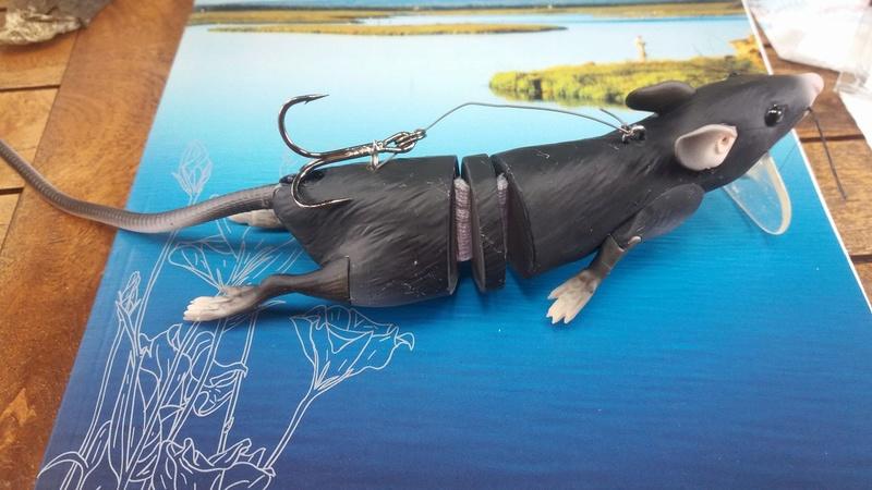 les poissons et leur leurres préférés Rat10