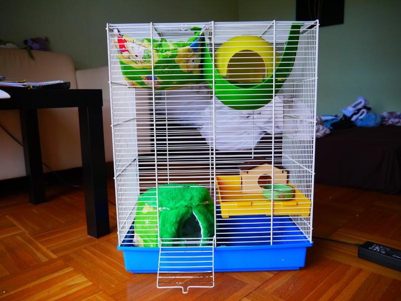 Vends grande et petite cage (RP) Cage_b10