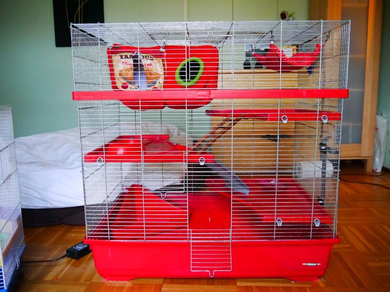 Vends grande et petite cage (RP) Cage_r10