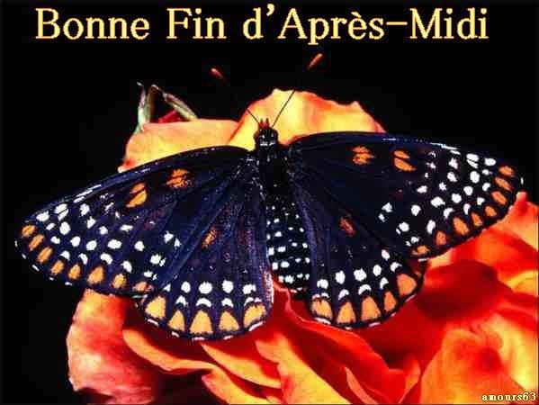 Bonjour / bonsoir du mois d'aôut - Page 2 29918510
