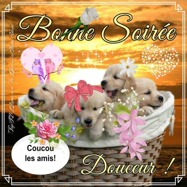 Bonjour / bonsoir du mois de juillet - Page 2 32795610