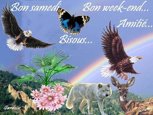 Bonjour / bonsoir du mois d'aôut - Page 2 6sunqe10