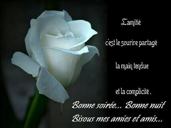 Bonjour / bonsoir du mois d'aôut - Page 2 8e9afc10