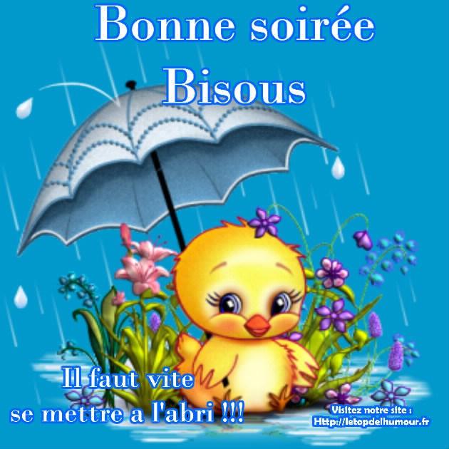 Bonjour / bonsoir du mois d'aôut Bonne-14