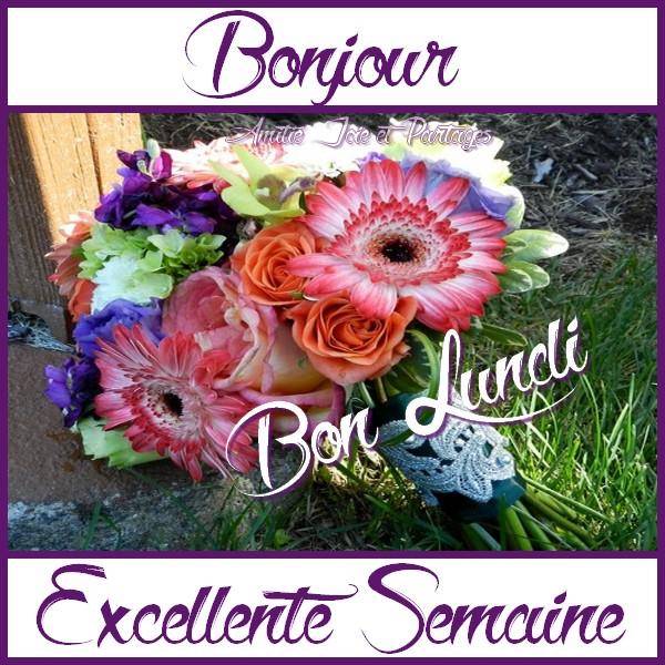 Bonjour / bonsoir du mois de juillet - Page 3 Lundi_11