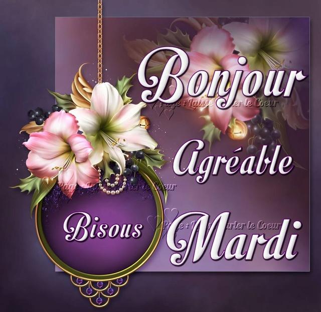 Bonjour / bonsoir du mois d'aôut - Page 3 Mardi_12