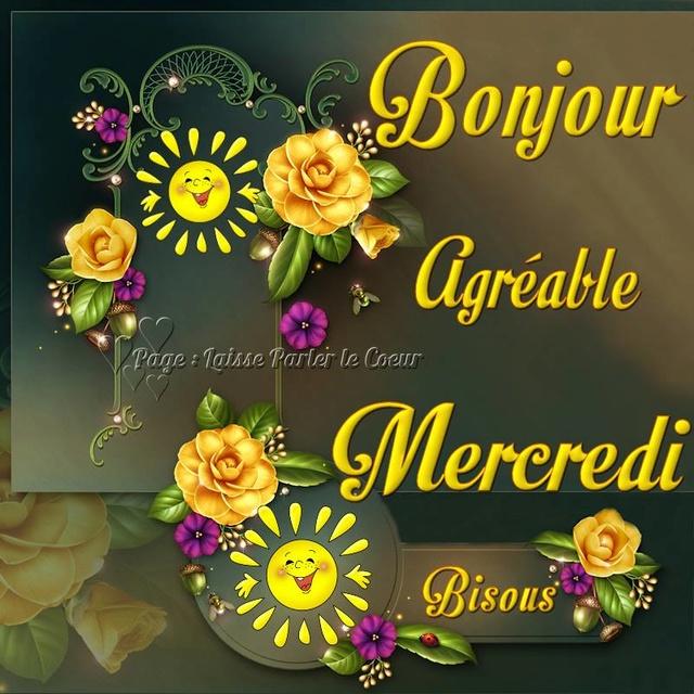 Bonjour / bonsoir du mois de juillet - Page 3 Mercre11