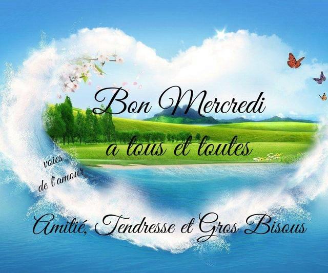 Bonjour / bonsoir du mois d'aôut - Page 3 Mercre14