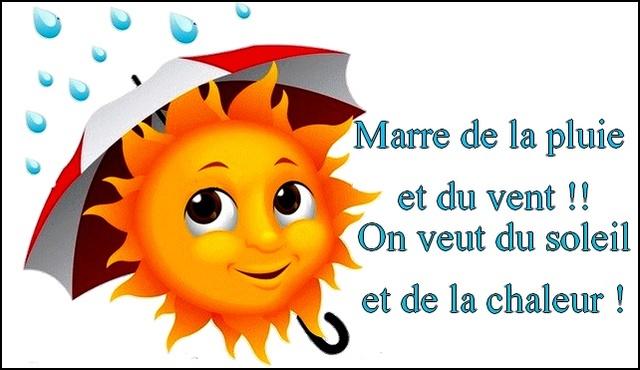 Bonjour / bonsoir du mois d'aôut - Page 3 Meteo_10
