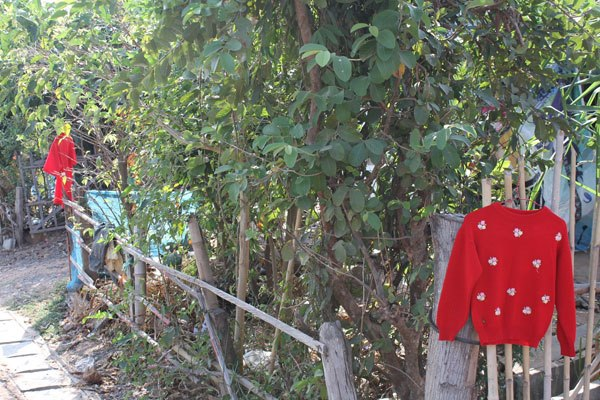 """Fantazma e Dritareve"" tmerron fshataret. Varin bluza te kuqe jashte shtepive per ta mbajtur larg. 58244_10"