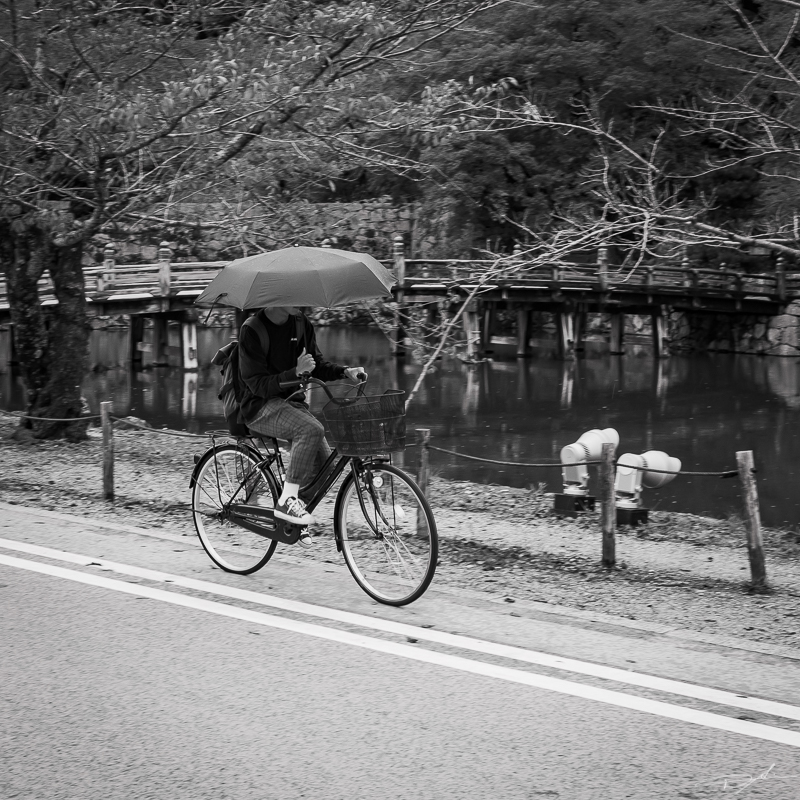 Street à Tokyo P1002512