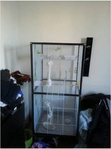 Besoin de vos conseils sur une cage  Cage14