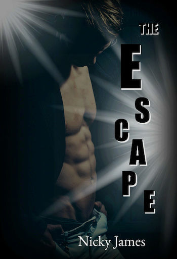 Healing hearts - Tome 3 : The Escape de Nicky James Captur10