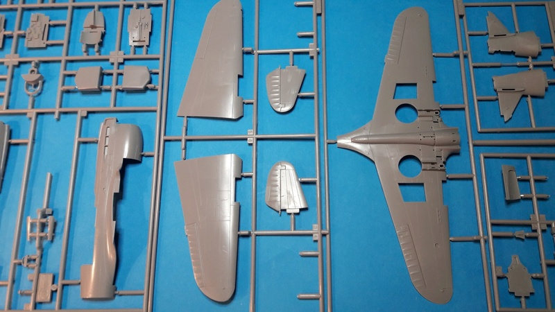 P40E  1/48 haségawa  -   Image220